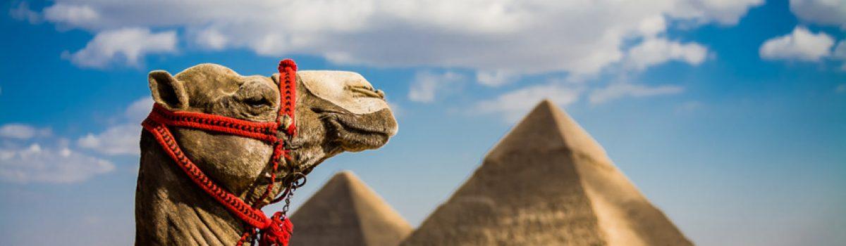 EGIPAT, HURGADA LETO – 2021.
