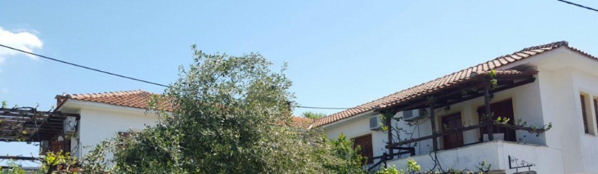 Vila Delfini